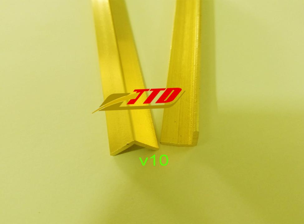nep-dong-V10